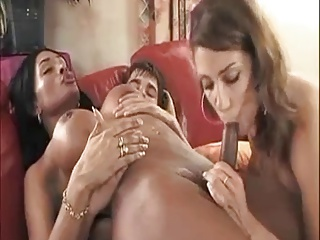 HELP WANTED 4 | Threesome.top Porn Tube